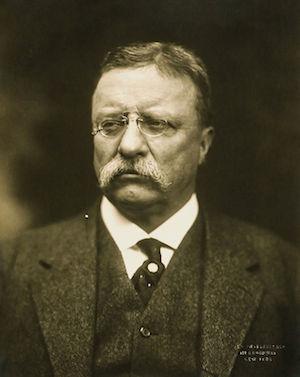 Theodore Roosevelt - 26th President