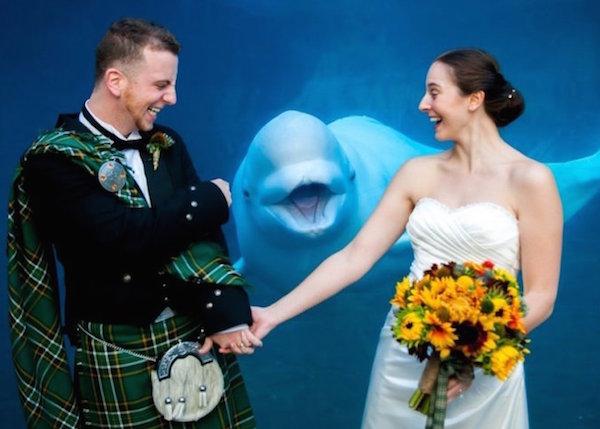 The ultimate Scottish photobomb